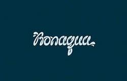 «Текстовые» логотипы