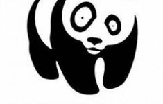 Требования, предъявляемые к логотипам